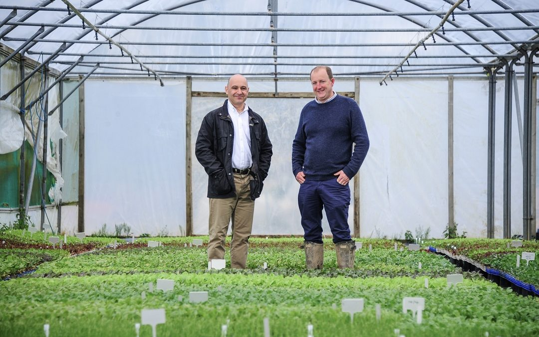 Rocket Gardens shortlisted for award