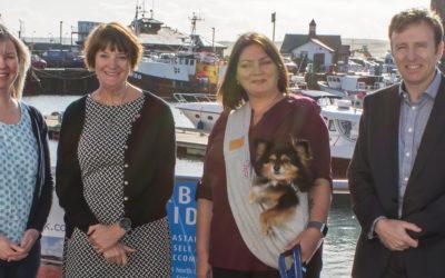 New Markets For High-End Pet Supplies Shop