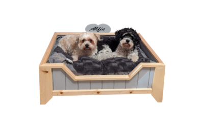 Pet Furniture Business Gets Tails Wagging